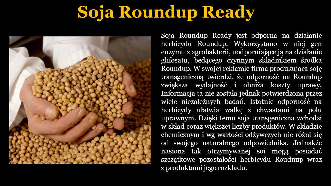 Soja Roundup Ready Soja Roundup Ready jest odporna na działanie herbicydu Roundup.