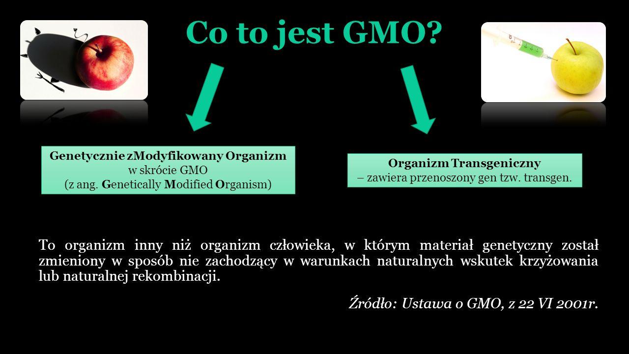 Co to jest GMO.