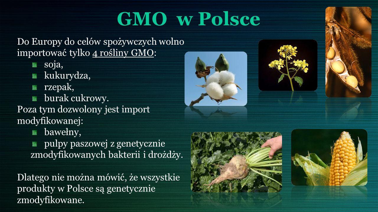 GMO w Polsce Do Europy do celów spożywczych wolno importować tylko 4 rośliny GMO: soja, kukurydza, rzepak, burak cukrowy.