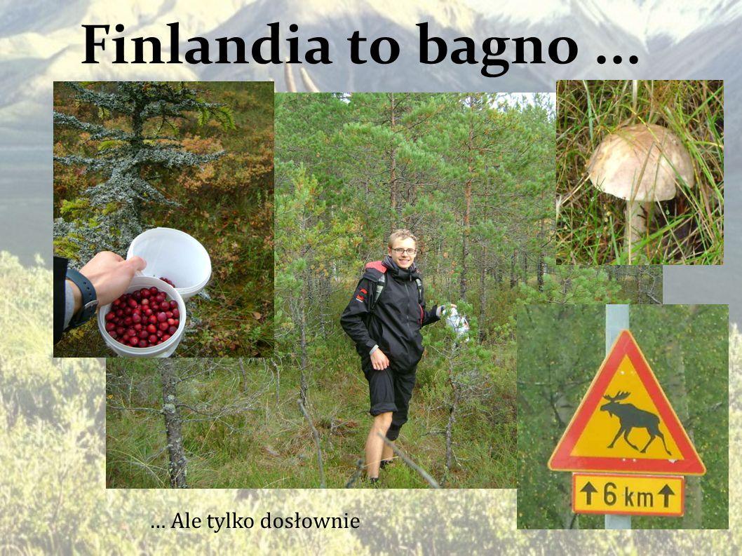 Finlandia to bagno... … Ale tylko dosłownie