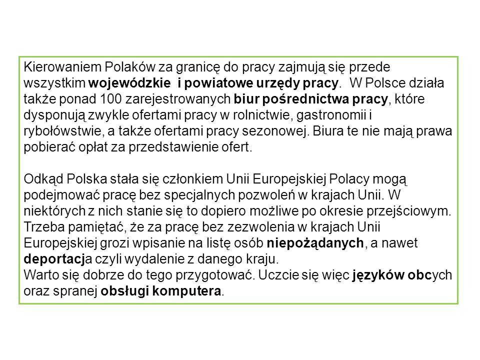 Kierowaniem Polaków za granicę do pracy zajmują się przede wszystkim wojewódzkie i powiatowe urzędy pracy.