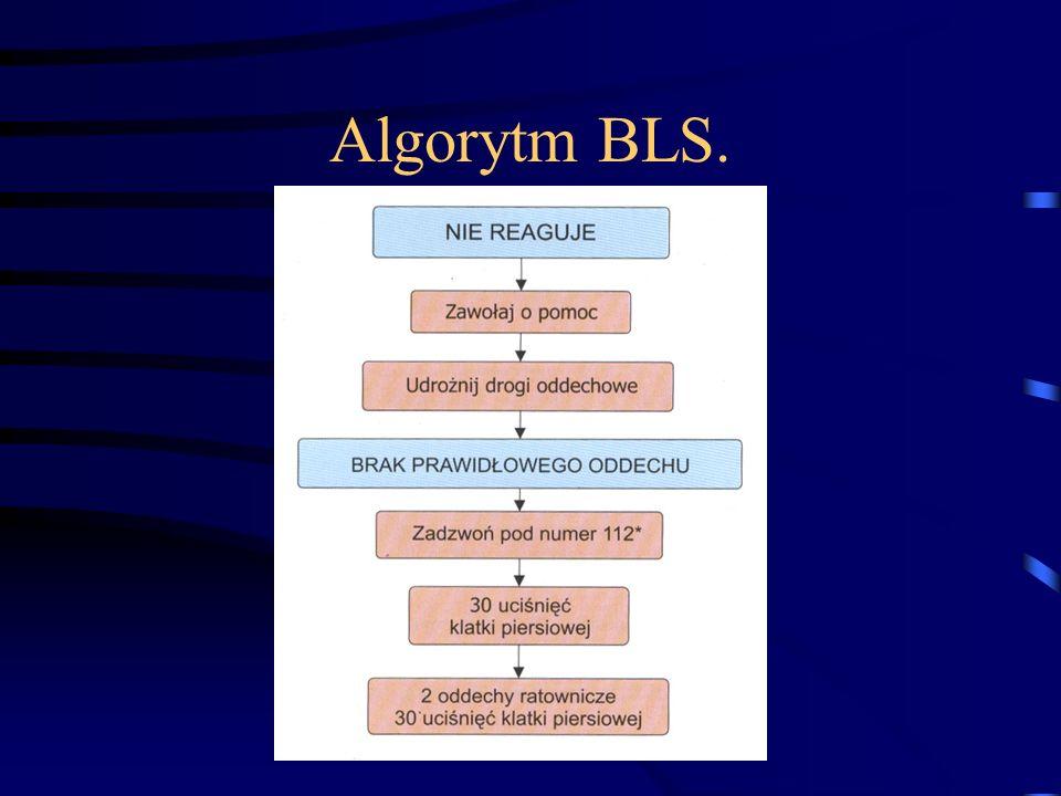 Algorytm BLS.