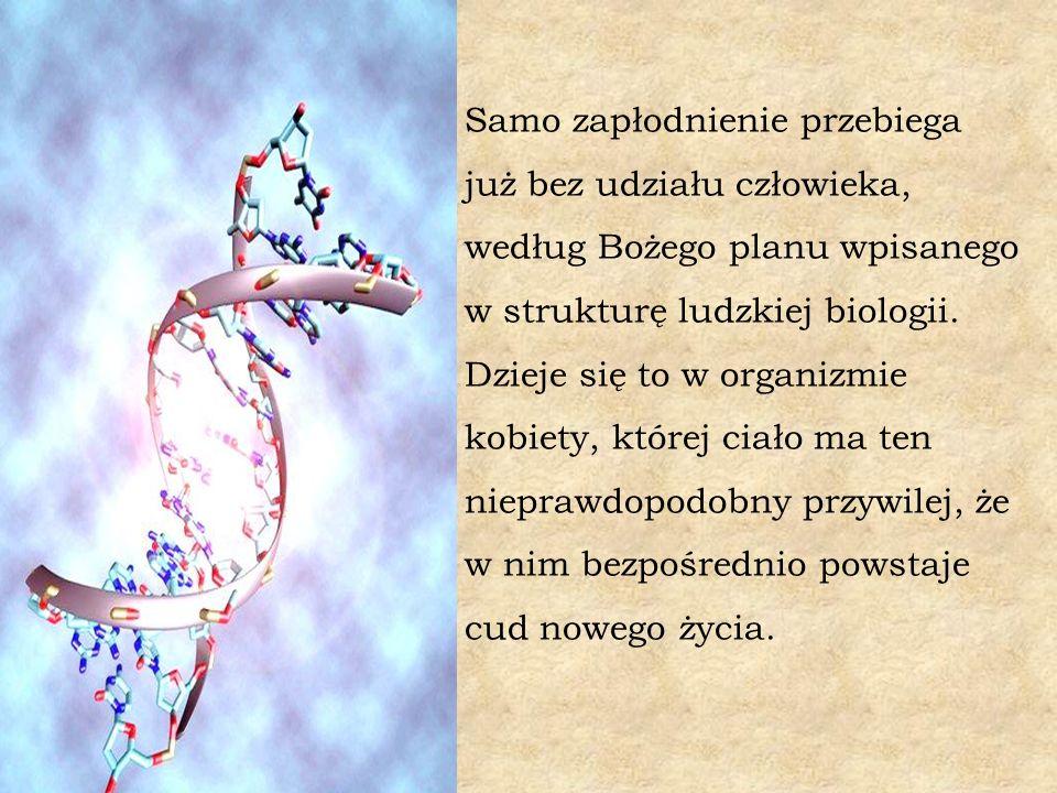 Samo zapłodnienie przebiega już bez udziału człowieka, według Bożego planu wpisanego w strukturę ludzkiej biologii.
