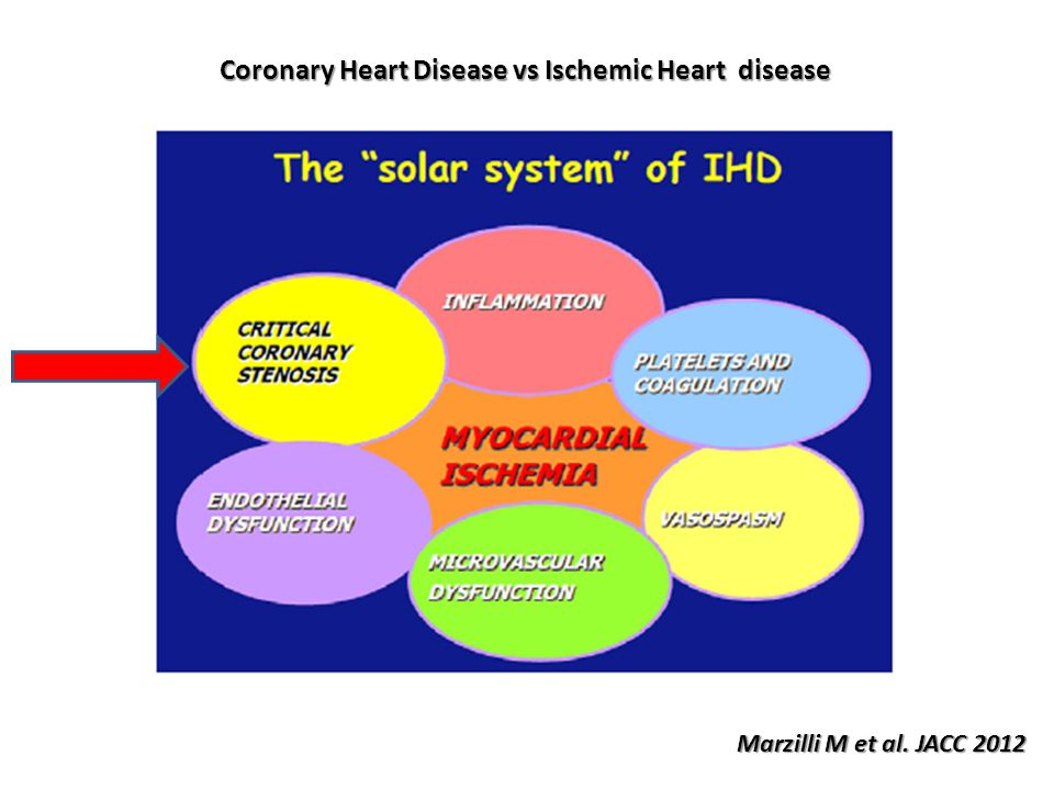 Coronary Heart Disease vs Ischemic Heart disease Marzilli M et al. JACC 2012