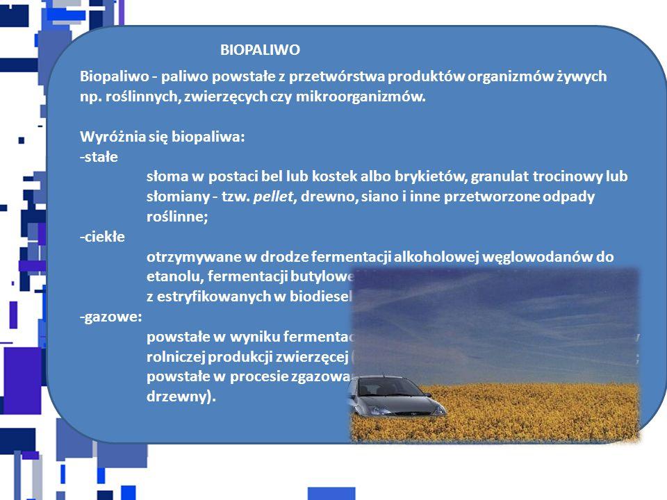BIOPALIWO Biopaliwo - paliwo powstałe z przetwórstwa produktów organizmów żywych np.