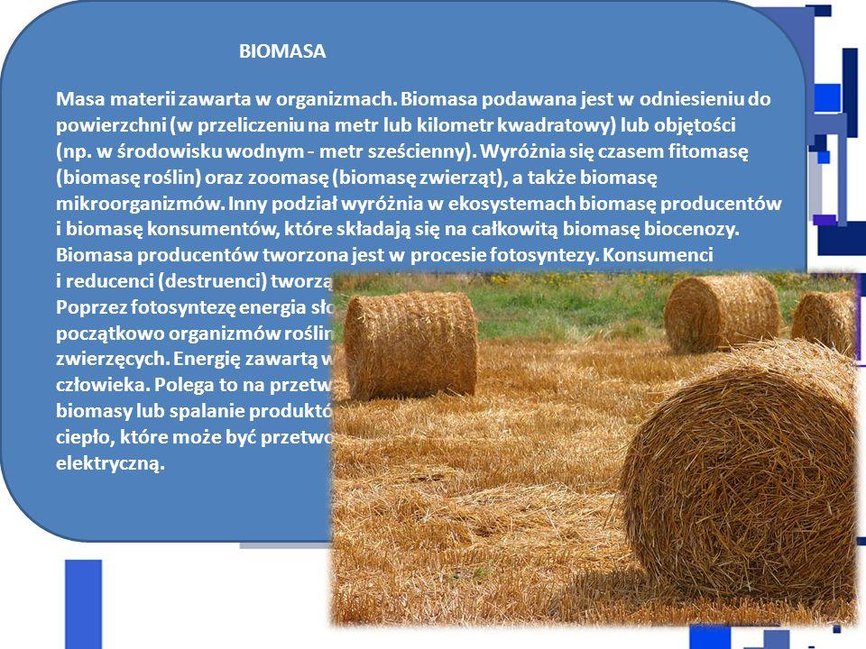 BIOMASA Masa materii zawarta w organizmach. Biomasa podawana jest w odniesieniu do powierzchni (w przeliczeniu na metr lub kilometr kwadratowy) lub ob