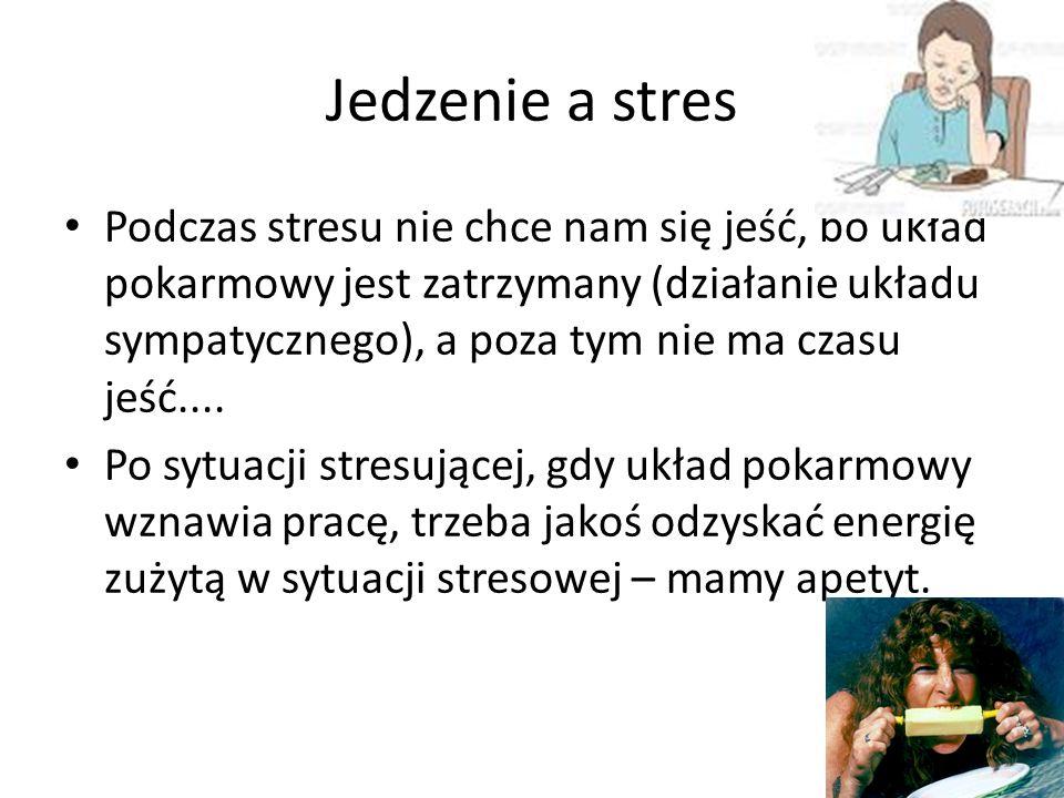 Jedzenie a stres Podczas stresu nie chce nam się jeść, bo układ pokarmowy jest zatrzymany (działanie układu sympatycznego), a poza tym nie ma czasu jeść....