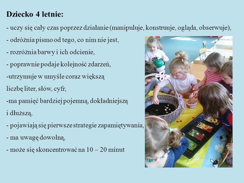 Dziecko 4 letnie: - uczy się cały czas poprzez działanie (manipuluje, konstruuje, ogląda, obserwuje), - odróżnia pismo od tego, co nim nie jest, - rozróżnia barwy i ich odcienie, - poprawnie podaje kolejność zdarzeń, -utrzymuje w umyśle coraz większą liczbę liter, słów, cyfr, -ma pamięć bardziej pojemną, dokładniejszą i dłuższą, - pojawiają się pierwsze strategie zapamiętywania, - ma uwagę dowolną, - może się skoncentrować na 10 – 20 minut