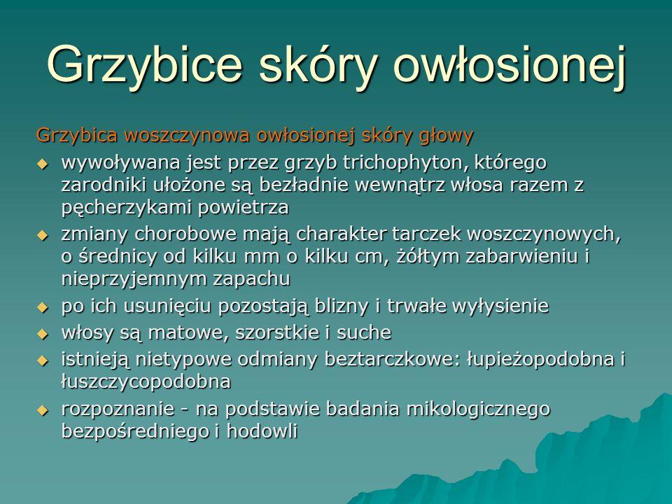 Grzybice skóry owłosionej Grzybica woszczynowa owłosionej skóry głowy  wywoływana jest przez grzyb trichophyton, którego zarodniki ułożone są bezładn