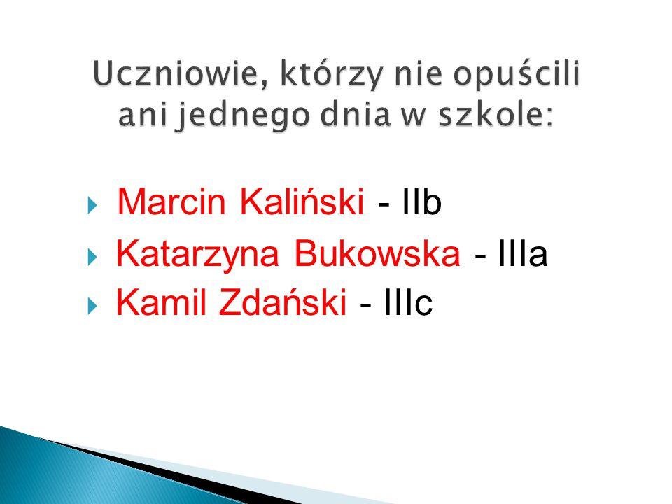  Marcin Kaliński - IIb  Katarzyna Bukowska - IIIa  Kamil Zdański - IIIc