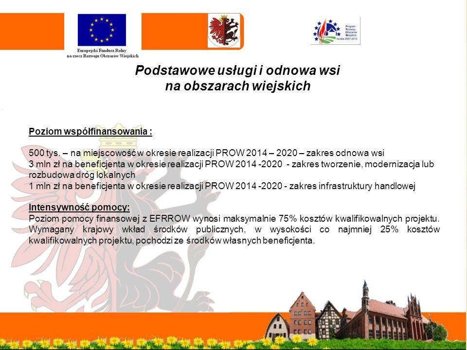 Podstawowe usługi i odnowa wsi na obszarach wiejskich Poziom współfinansowania : 500 tys.