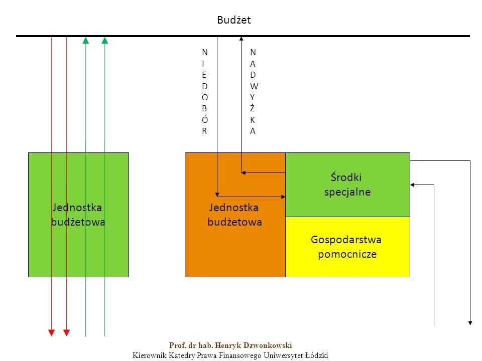 Jednostka budżetowa Jednostka budżetowa Środki specjalne Gospodarstwa pomocnicze Budżet NIEDOBÓRNIEDOBÓR NADWYŻKANADWYŻKA Prof.