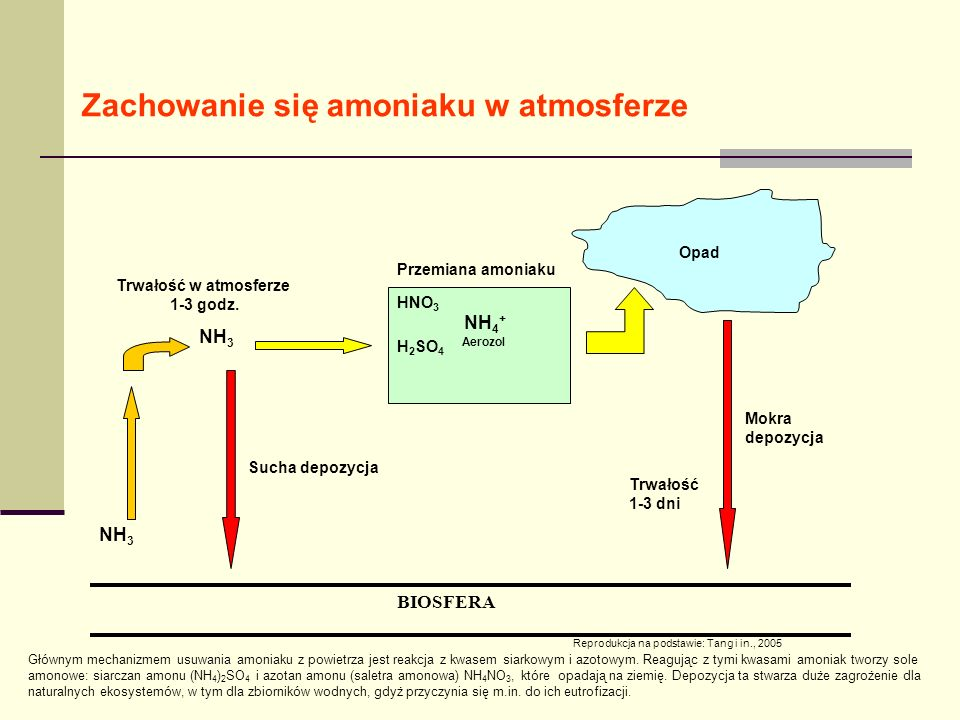 NH 3 HNO 3 NH 4 + H 2 SO 4 Aerozol BIOSFERA Trwałość w atmosferze 1-3 godz.