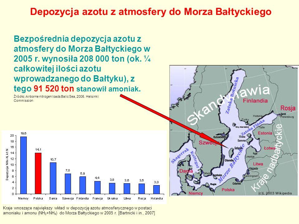 Bezpośrednia depozycja azotu z atmosfery do Morza Bałtyckiego w 2005 r.