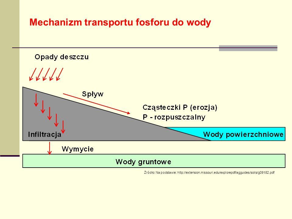 Mechanizm transportu fosforu do wody Źródło: Na podstawie: http://extension.missouri.edu/explorepdf/agguides/soils/g09182.pdf