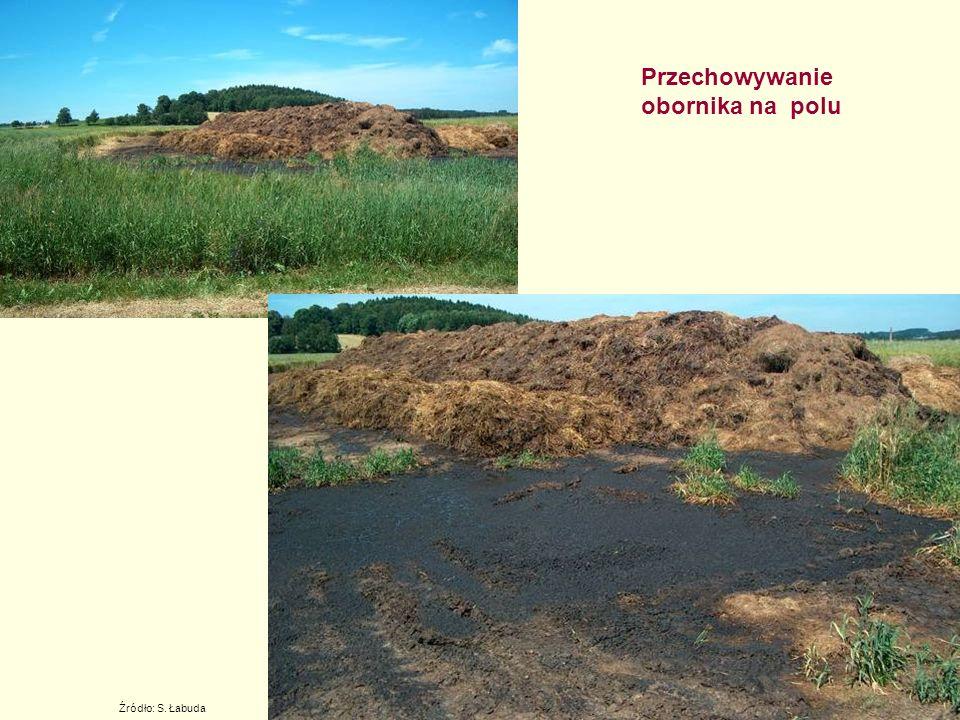 Przechowywanie obornika na polu Źródło: S. Łabuda
