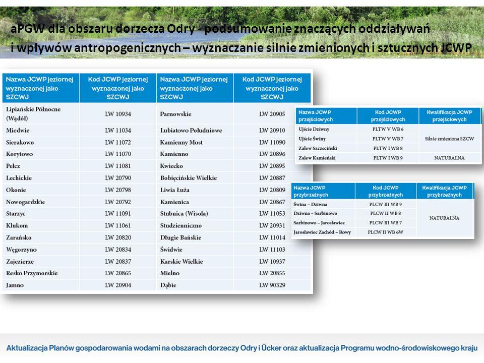 aPGW dla obszaru dorzecza Odry - podsumowanie znaczących oddziaływań i wpływów antropogenicznych – wyznaczanie silnie zmienionych i sztucznych JCWP