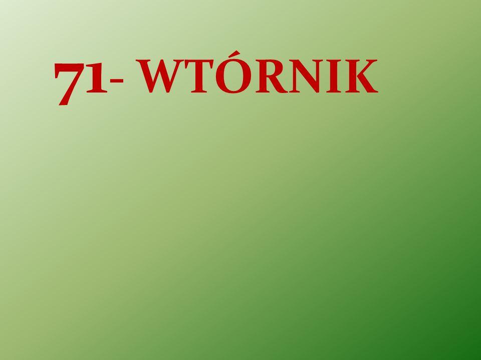 71 - WTÓRNIK