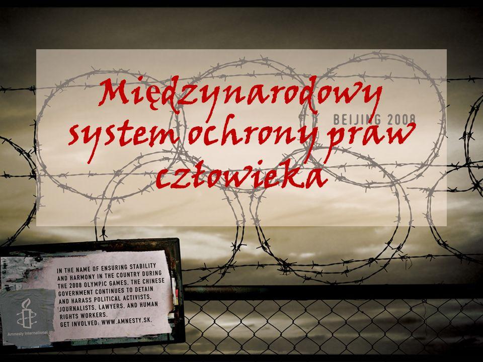 Mi ę dzynarodowy system ochrony praw człowieka