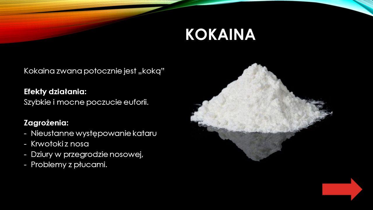 """KOKAINA Kokaina zwana potocznie jest """"koką Efekty działania: Szybkie i mocne poczucie euforii."""