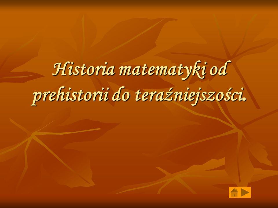 Historia matematyki od prehistorii do teraźniejszości.