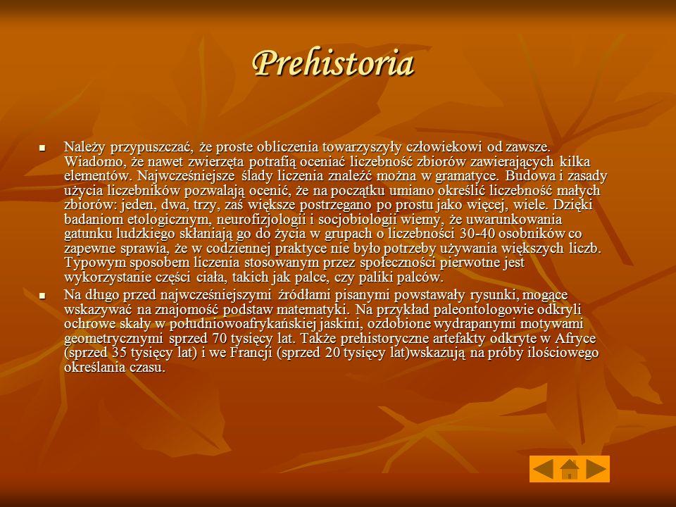 Prehistoria Należy przypuszczać, że proste obliczenia towarzyszyły człowiekowi od zawsze. Wiadomo, że nawet zwierzęta potrafią oceniać liczebność zbio