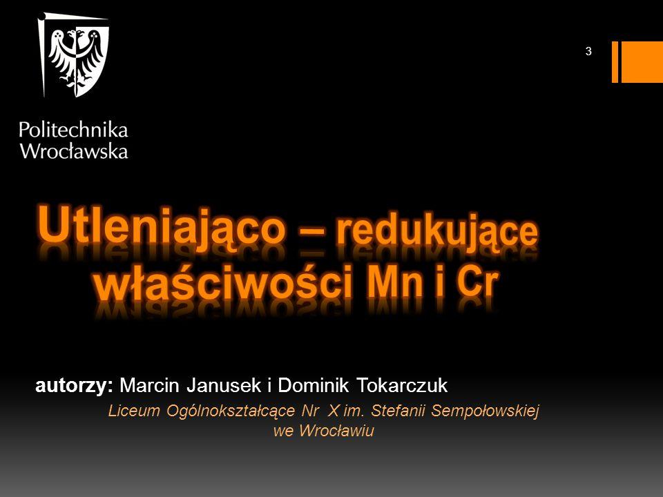 autorzy: Marcin Janusek i Dominik Tokarczuk Liceum Ogólnokształcące Nr X im.