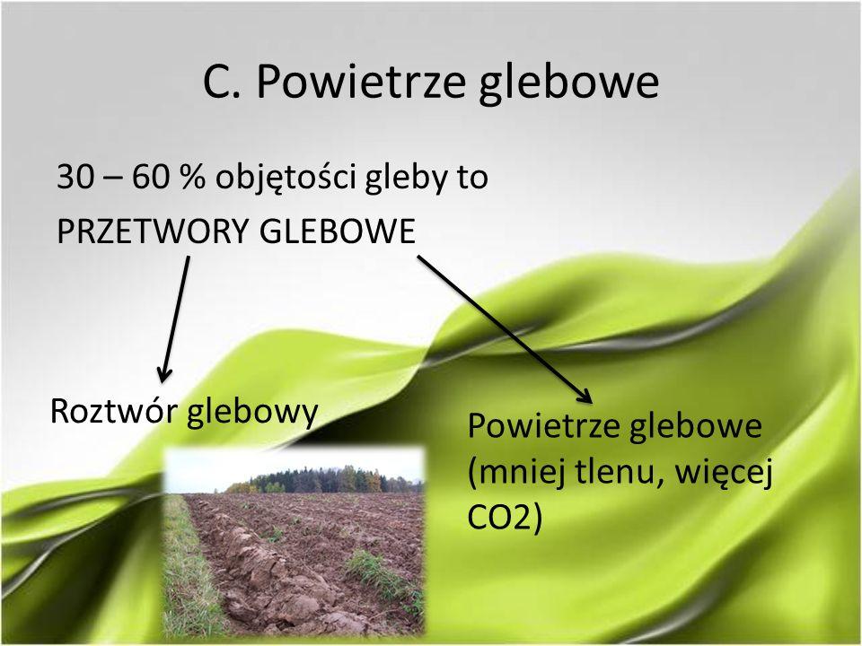 C. Powietrze glebowe 30 – 60 % objętości gleby to PRZETWORY GLEBOWE Roztwór glebowy Powietrze glebowe (mniej tlenu, więcej CO2)