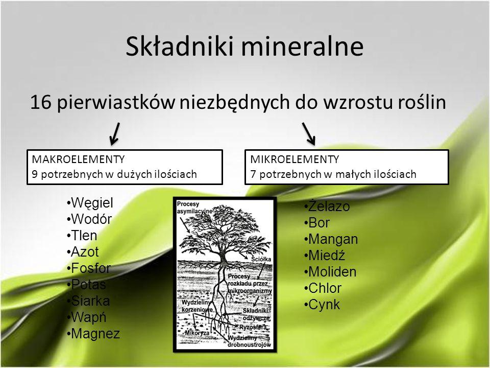Składniki mineralne 16 pierwiastków niezbędnych do wzrostu roślin MAKROELEMENTY 9 potrzebnych w dużych ilościach Węgiel Wodór Tlen Azot Fosfor Potas Siarka Wapń Magnez MIKROELEMENTY 7 potrzebnych w małych ilościach Żelazo Bor Mangan Miedź Moliden Chlor Cynk