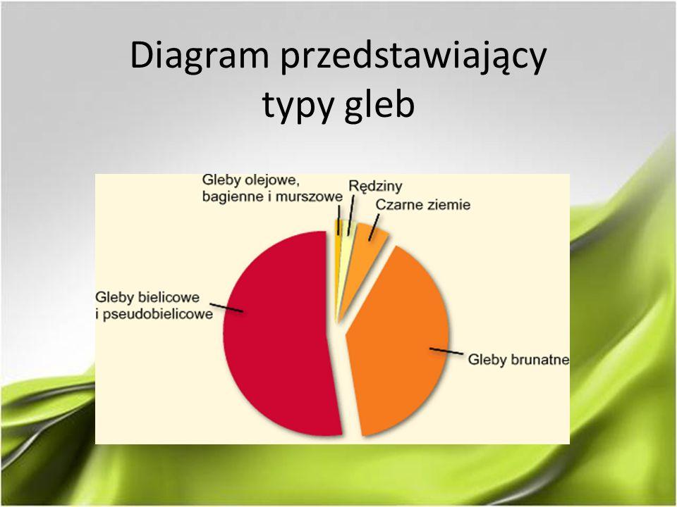 Diagram przedstawiający typy gleb