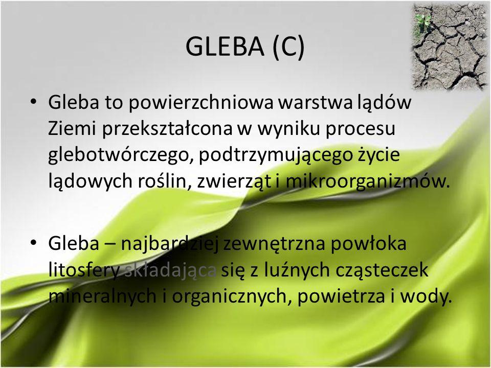 GLEBA (C) Gleba to powierzchniowa warstwa lądów Ziemi przekształcona w wyniku procesu glebotwórczego, podtrzymującego życie lądowych roślin, zwierząt i mikroorganizmów.