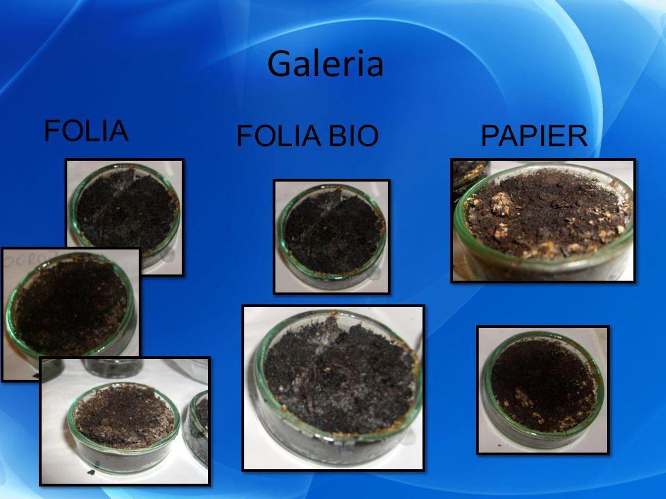 Galeria FOLIA FOLIA BIOPAPIER