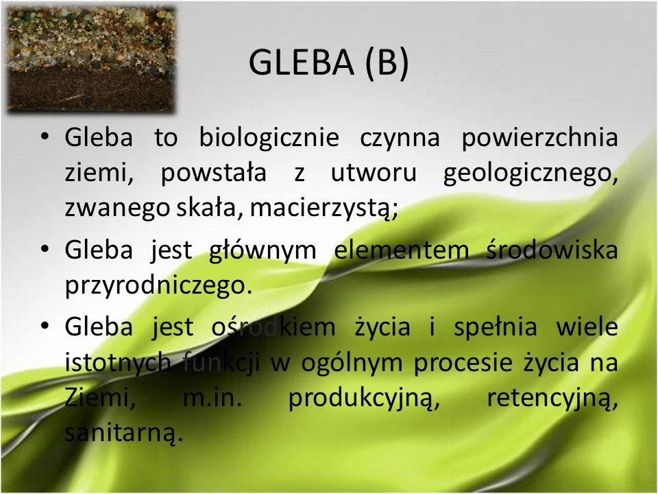 GLEBA (B) Gleba to biologicznie czynna powierzchnia ziemi, powstała z utworu geologicznego, zwanego skała, macierzystą; Gleba jest głównym elementem ś