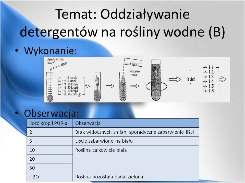 Temat: Oddziaływanie detergentów na rośliny wodne (B) Wykonanie: Obserwacja: Ilość kropli PUR-aObserwacja 2Brak widocznych zmian, sporadyczne zabarwie