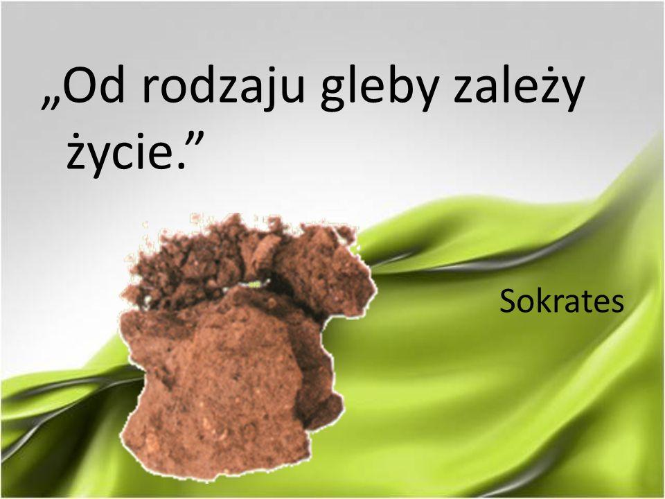 """""""Od rodzaju gleby zależy życie."""" Sokrates"""