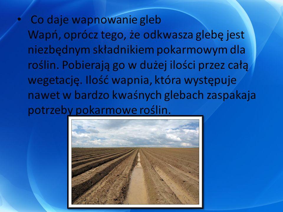 Co daje wapnowanie gleb Wapń, oprócz tego, że odkwasza glebę jest niezbędnym składnikiem pokarmowym dla roślin. Pobierają go w dużej ilości przez całą