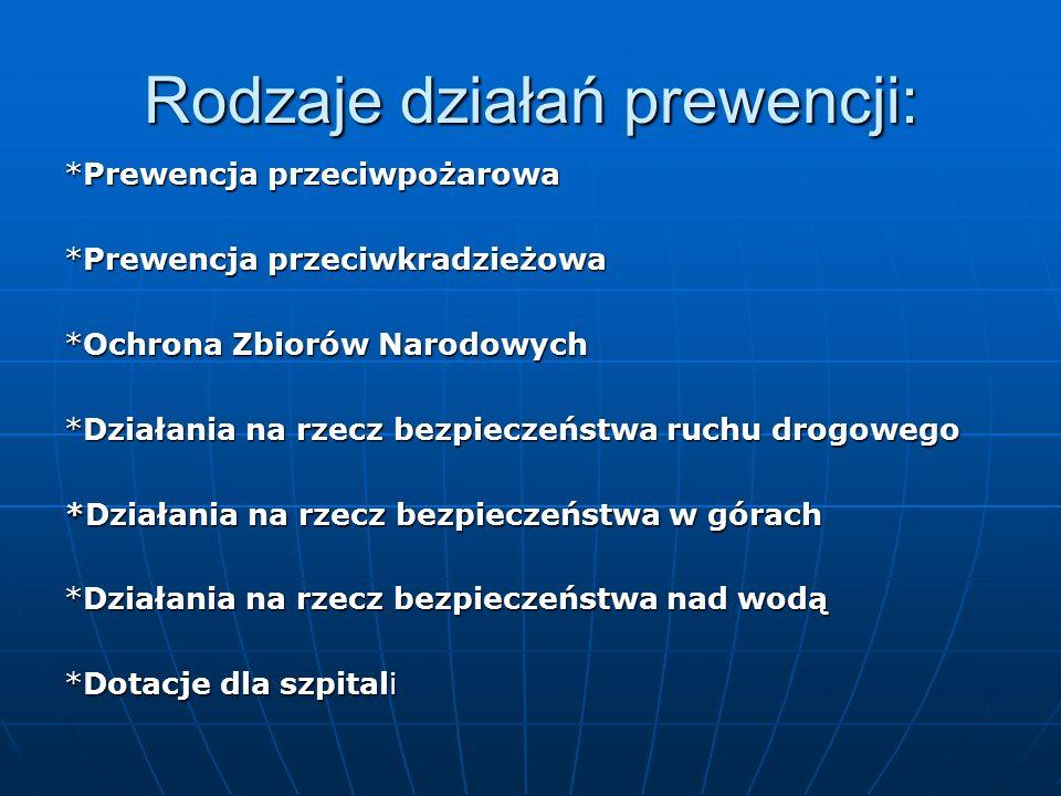 """""""Blisko Boisko Ministerstwo Sportu oraz PZU S.A."""