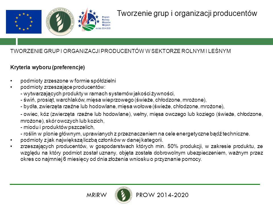 Tworzenie grup i organizacji producentów TWORZENIE GRUP I ORGANIZACJI PRODUCENTÓW W SEKTORZE ROLNYM I LEŚNYM Kryteria wyboru (preferencje) podmioty zr