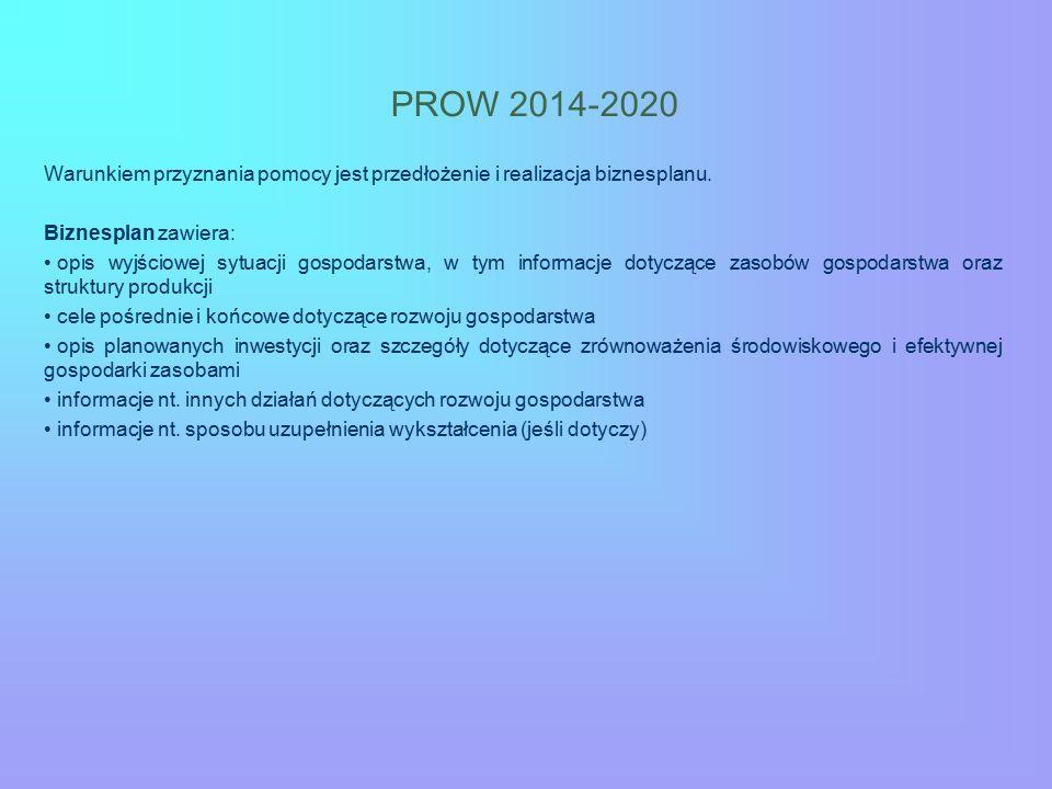 PROW 2014-2020 Warunkiem przyznania pomocy jest przedłożenie i realizacja biznesplanu. Biznesplan zawiera: opis wyjściowej sytuacji gospodarstwa, w ty