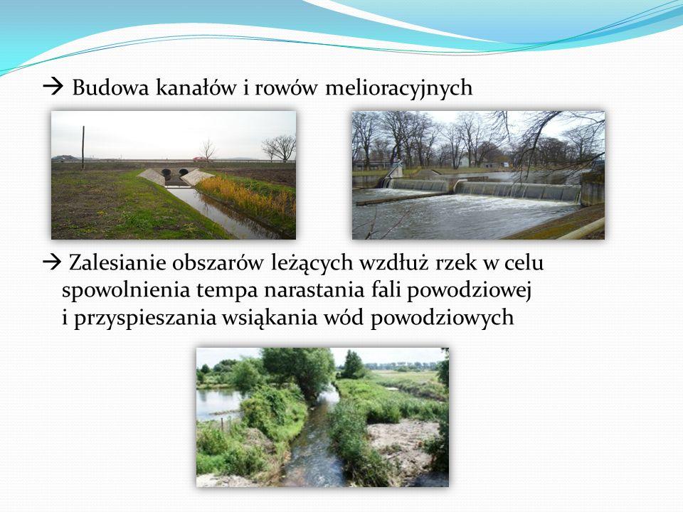  Budowa kanałów i rowów melioracyjnych  Zalesianie obszarów leżących wzdłuż rzek w celu spowolnienia tempa narastania fali powodziowej i przyspieszania wsiąkania wód powodziowych