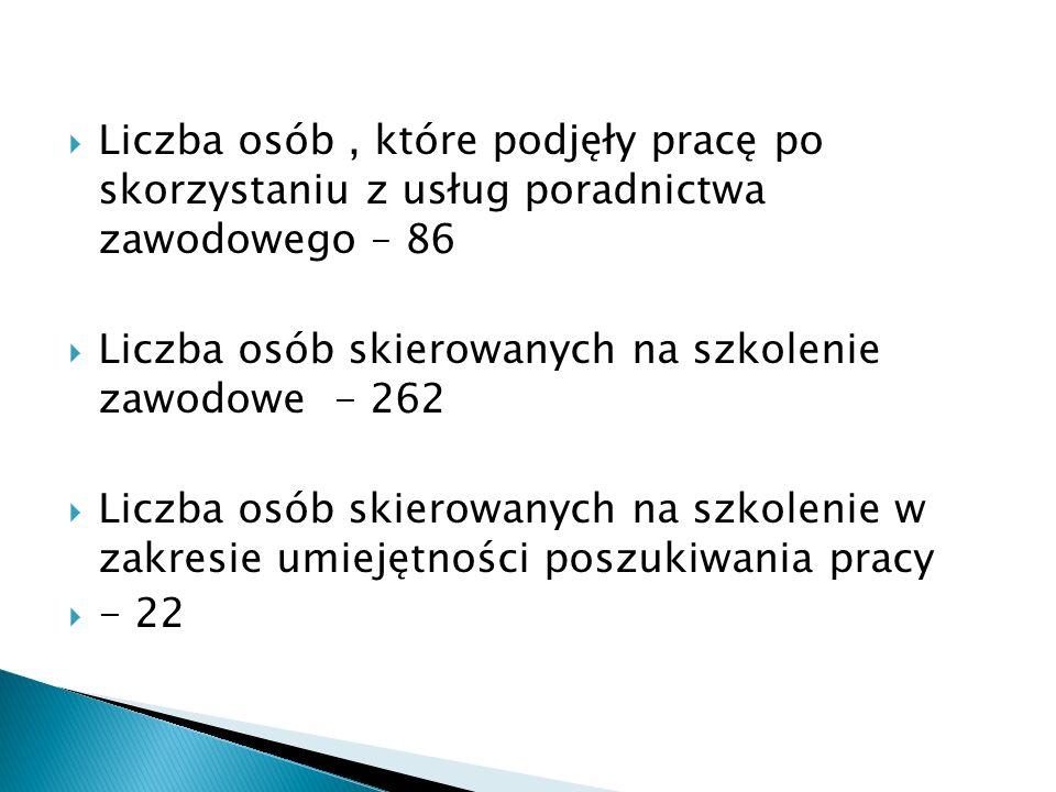  Liczba osób, które podjęły pracę po skorzystaniu z usług poradnictwa zawodowego – 86  Liczba osób skierowanych na szkolenie zawodowe - 262  Liczba osób skierowanych na szkolenie w zakresie umiejętności poszukiwania pracy  - 22