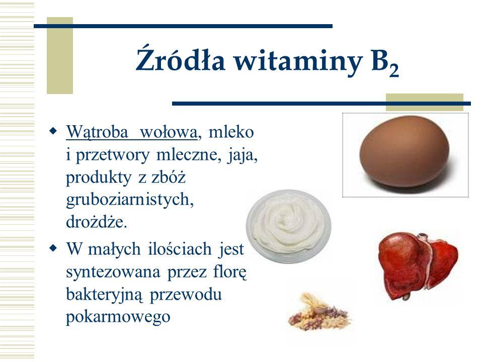 Źródła witaminy B 2  Wątroba wołowa, mleko i przetwory mleczne, jaja, produkty z zbóż gruboziarnistych, drożdże.  W małych ilościach jest syntezowan