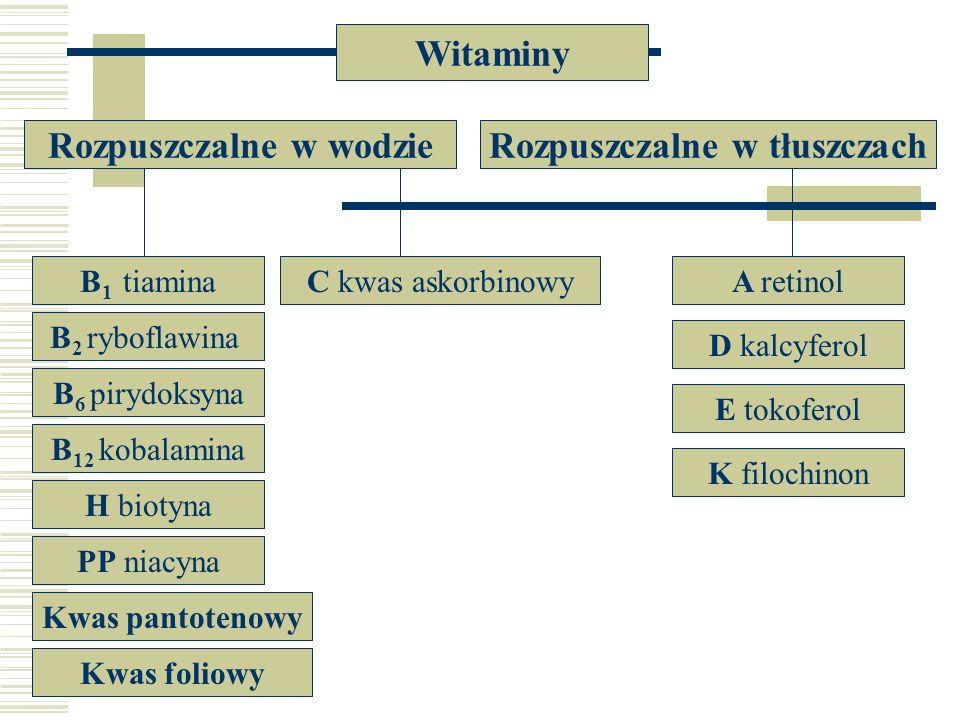 Witaminy Rozpuszczalne w wodzieRozpuszczalne w tłuszczach B 2 ryboflawina B 12 kobalamina H biotyna PP niacyna Kwas pantotenowy Kwas foliowy B 6 piryd