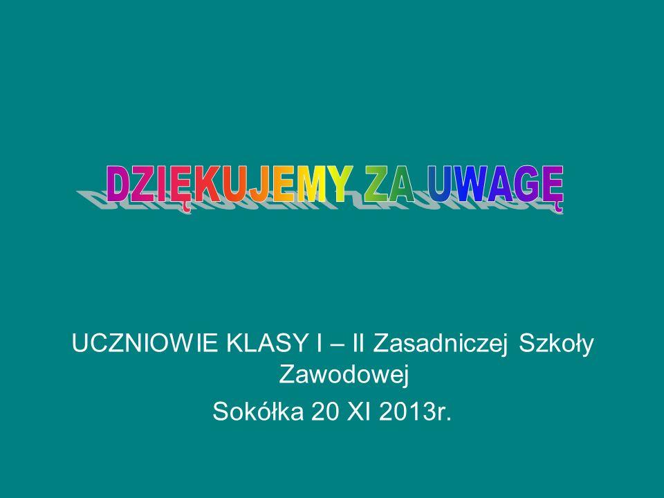 UCZNIOWIE KLASY I – II Zasadniczej Szkoły Zawodowej Sokółka 20 XI 2013r.