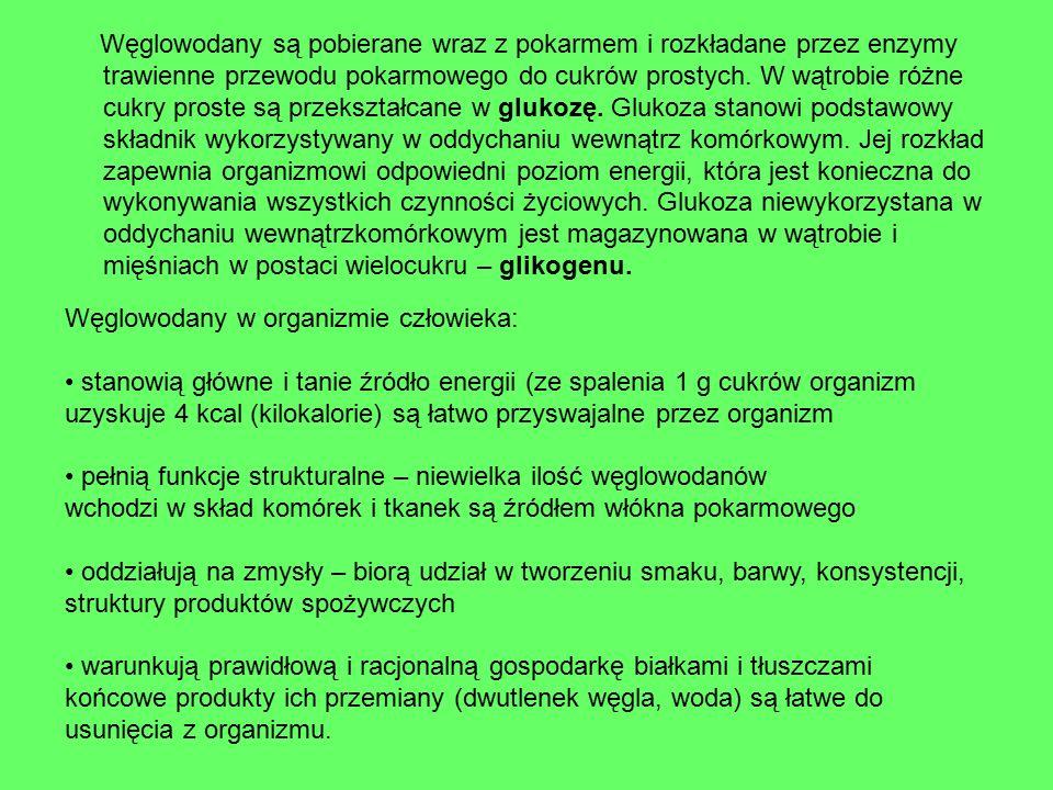 5.ŹRÓDŁA TŁUSZCZÓW I ICH ROLA W ORGANIZMIE Tłuszcze dzielimy na roślinne i zwierzęce.