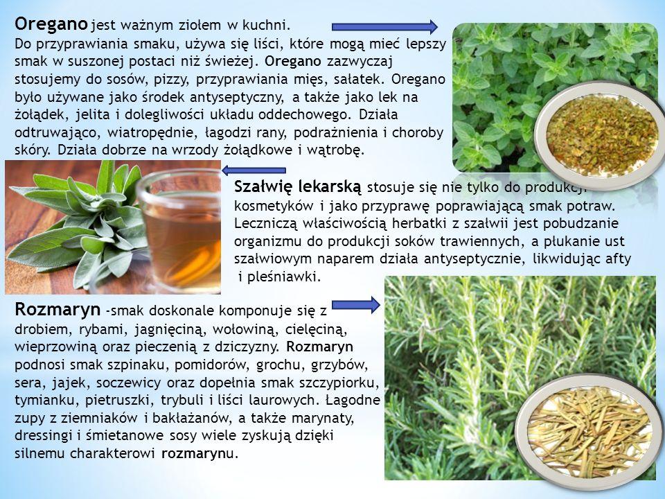 Oregano jest ważnym ziołem w kuchni.