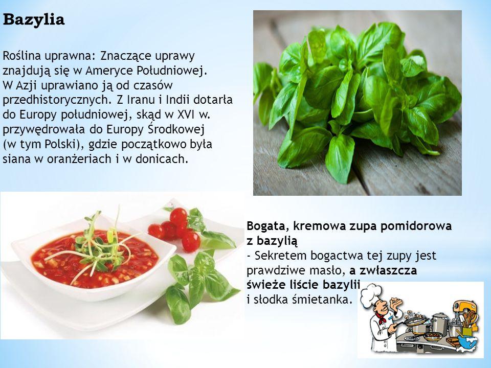 Bogata, kremowa zupa pomidorowa z bazylią - Sekretem bogactwa tej zupy jest prawdziwe masło, a zwłaszcza świeże liście bazylii i słodka śmietanka.