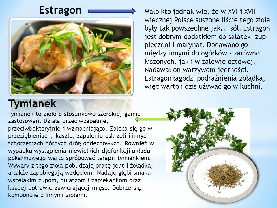 Mało kto jednak wie, że w XVI i XVII- wiecznej Polsce suszone liście tego zioła były tak powszechne jak...