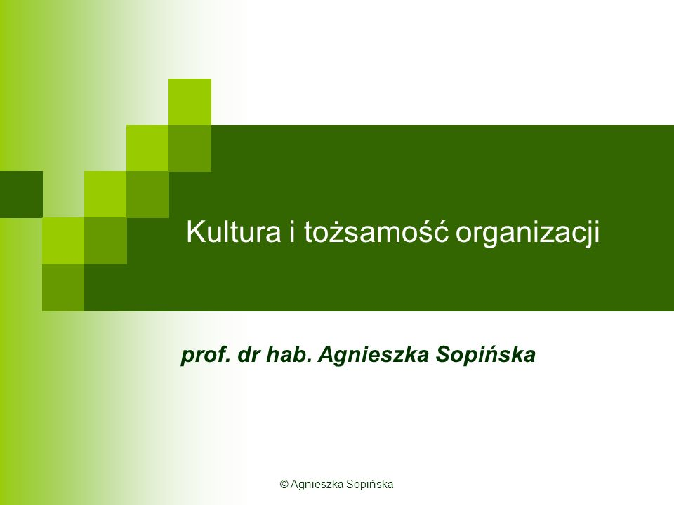 Kultura i tożsamość organizacji prof. dr hab. Agnieszka Sopińska © Agnieszka Sopińska