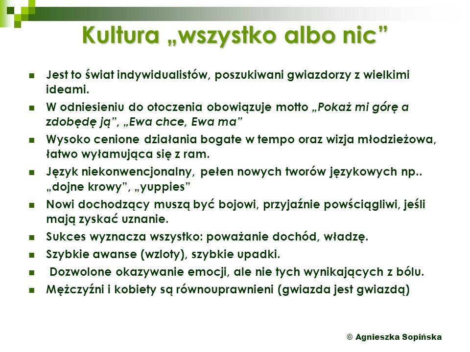 """© Agnieszka Sopińska Kultura """"wszystko albo nic Jest to świat indywidualistów, poszukiwani gwiazdorzy z wielkimi ideami."""